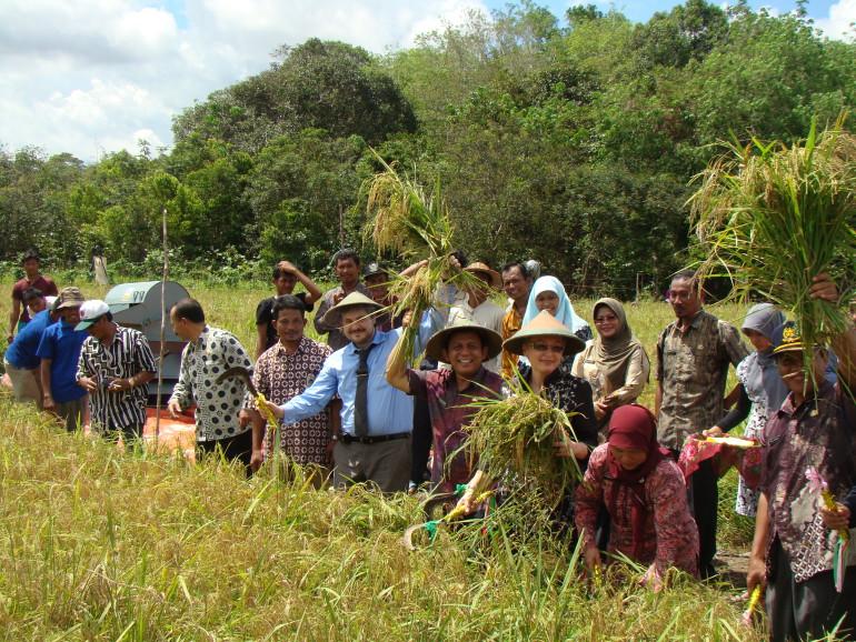 Праздник риса, Бинтан, Индонезия